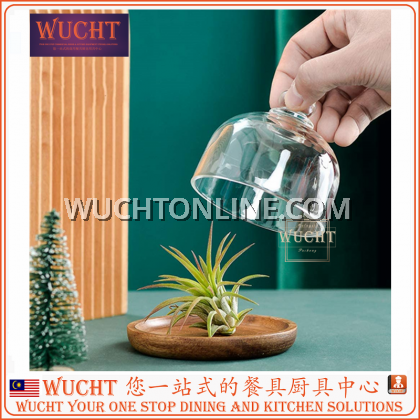 【WUCHT】Wooden Cheese Dome Mini Dessert Plant Platter with Glass Top and Wooden Base Rustic Decorative Cheese Mini Cake Platter